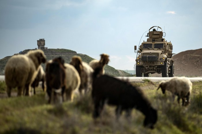 A US military vehicle advances past a herd of sheep/ Representative image (Credit: AFP)