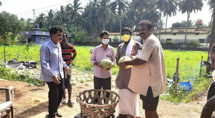 Raghu Madyasta selling watermelon on his farmland at Saligrama Parampalli.