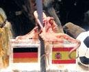 With Spain's win, psychic octopus keeps perfect record