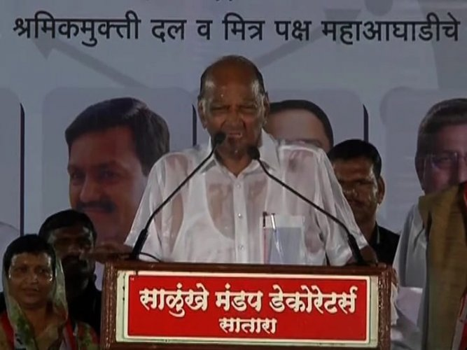 NCP supremo Sharad Pawar addressing a rally in Satara amidst heavy downpour.