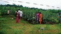 Uniting farmers through agriculture exhibition