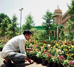 Vidhana Soudha decked up to welcome new ministers