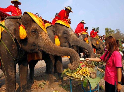 Rustic Thailand