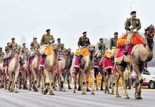 BSF camel contingent to march on R-Day