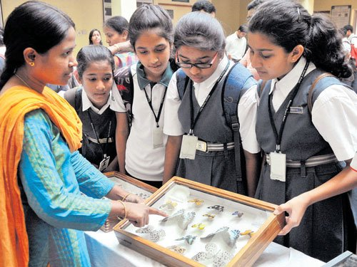 Handicrafts to manure, insects find use in myriad products