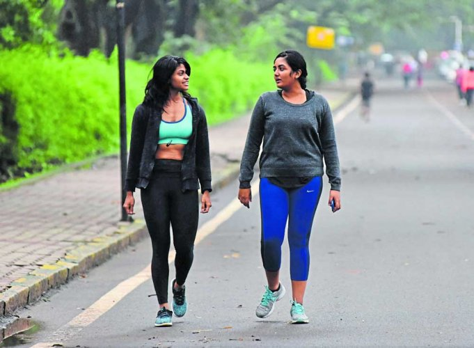 Signage coming up to make Cubbon Park easy to explore