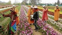 Baand Pather, a dying art of Kashmir