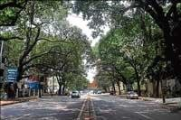 RWAs to protest against Sankey Road widening today