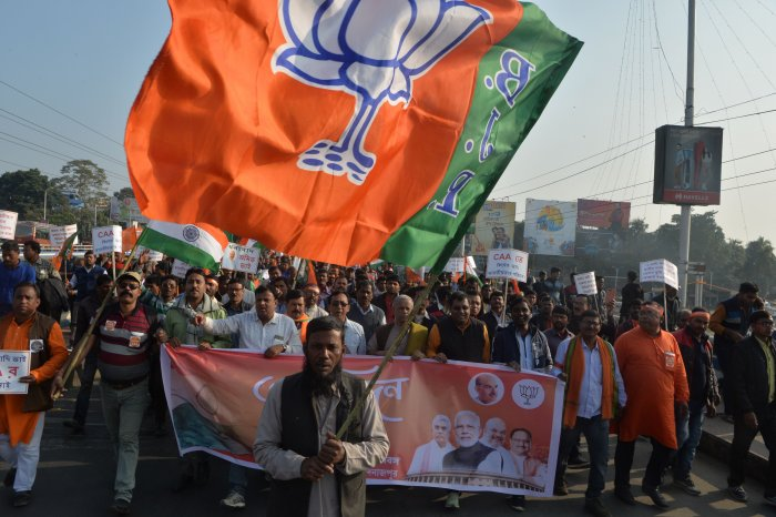 BJP flag. (PTI Photo)