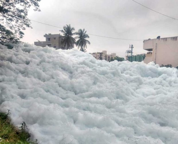 Over the years, the Bellandur lake has known for foaming multiple times and even catching fire on occasions. DH Photo