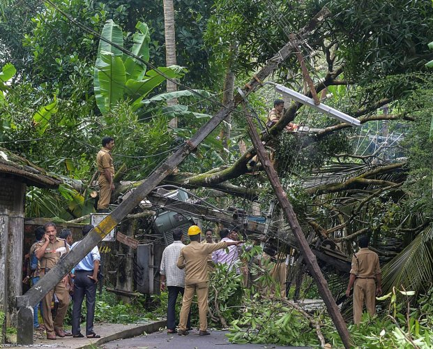 Police personnel and officials gauge the damaged caused after a tree fell on a transformer following heavy rains, in Kozhikode on Wednesday. (PTI Photo)