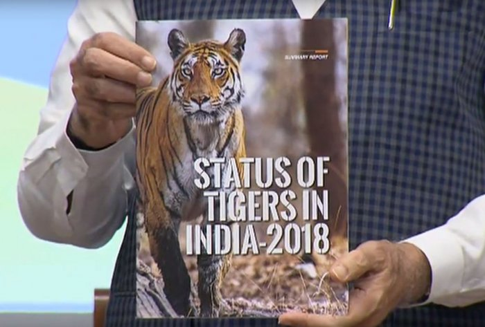 Prime Minister Narendra Modi releases the fourth cycle of All India Tiger Estimation 2018. (Video Grab)