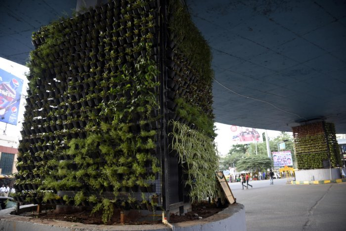 DH file photo of vertical gardens in Yeshwantpur.