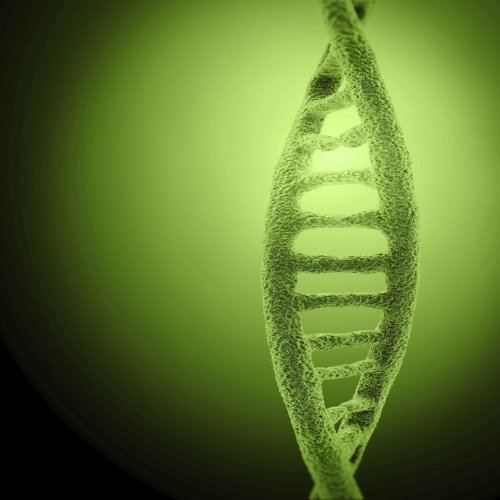 However, accurate identification depends on the quality of DNA sourced at the scene, according to researcher at the Flinders University in Australia. (File photo for representation)