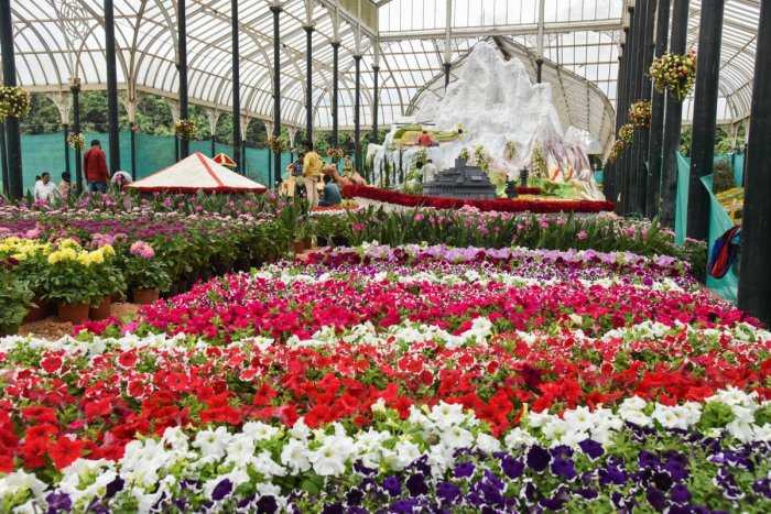 The twice-year, 10-day mega floral show will be open to visitors from August 9 to 18 and will feature several floral replicas representing Wadiyar's illustrious life and memories. (DH Photo)