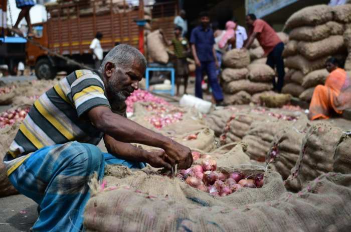 Farmers are selling onions for Rs 300-400 per kg, as against the input cost of Rs 400-500. DHPHOTO/krishnakumar P S