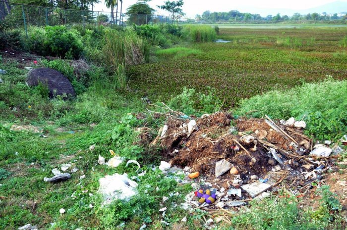 Garbage dumped at Kote Kere in Chikkamagaluru.