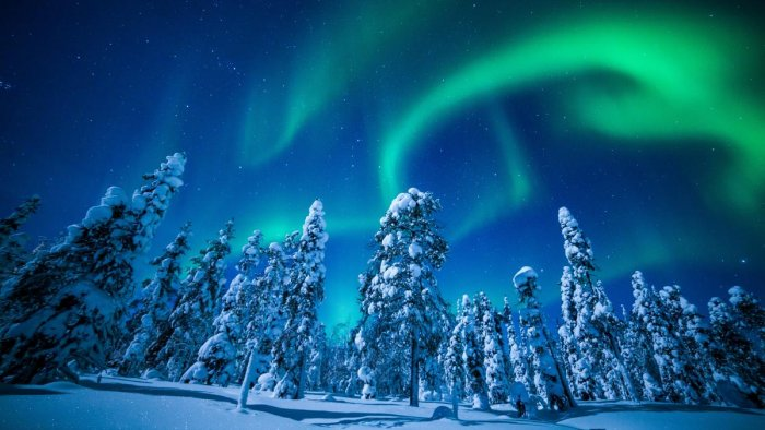 The Finns head to watch the Northern Lights