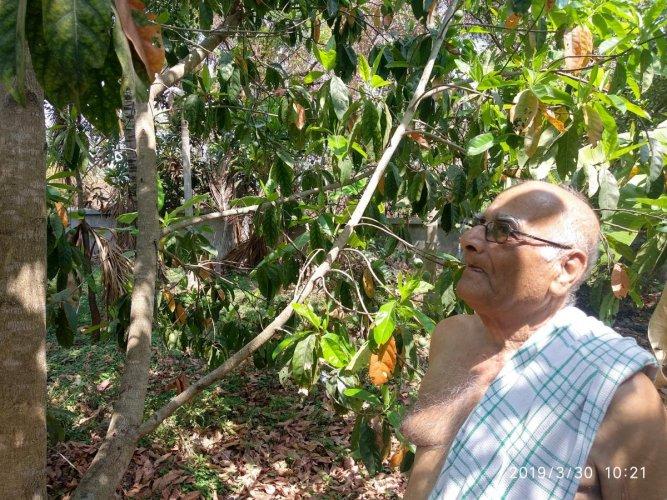 J T Somasekhar tends to the Rudraksha tree on his farm at Halagaiahnahundi village, on Bannur Road, near Mysuru.