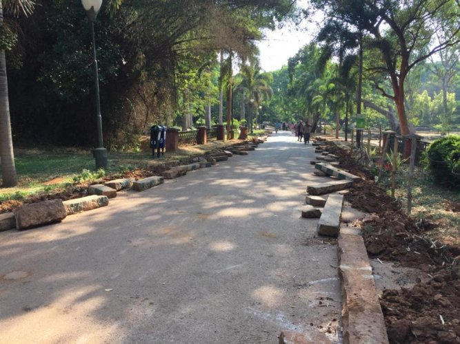 The horticulture department is carrying out asphalting of lanes inside Lalbagh to make it convenient for walkers and joggers. DH Photo/Niranjan Kaggere