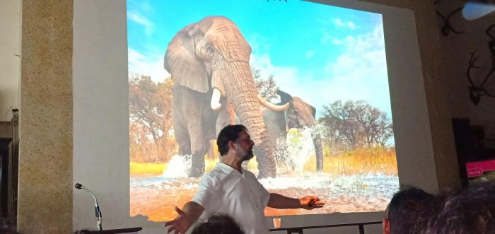 """""""It ranks fourth or fifth in the order of the transnational organised crime....we cannot imagine the volume,"""" said Dr Wasser addressing the Bombay Natural History Society (BNHS) on Friday evening. (DH Photo)"""