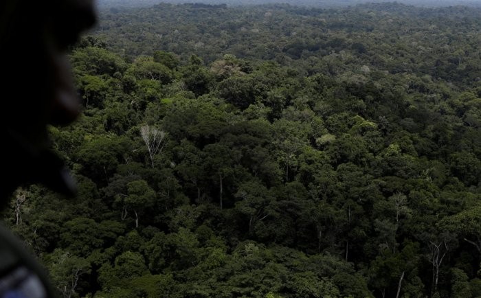 A policeman observes the Amazon rainforest during an operation conducted by agents of the Brazilian Institute for the Environment and Renewable Natural Resources, or Ibama, near Novo Progresso, southeast of Para state, Brazil, November 5, 2018. REUTERS/Fi