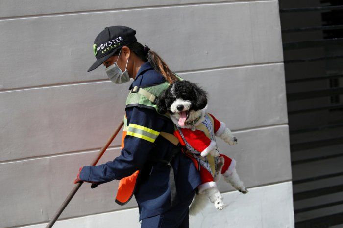 Thitirat Keowa-ram, Bangkok's street sweeper, carries her 1-year old poodle-shih tzu mix breed as she works at a street in Bangkok. (Reuters Photo)