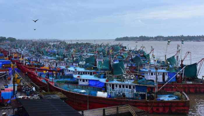 Fishing boats anchored at Old Port in Mangaluru, following Cyclone Kyarr in the Arabian Sea on Friday. DH Photo/Govindraj Javali