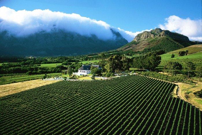 Spectaular Cape Winelands Stellenbosch, South Africa