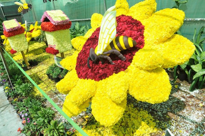 An art work on a bee collecting nectar from a flower was a centre of attraction at the flower exhibition in Chikkamagaluru.