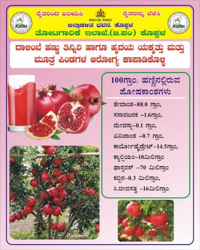 A pamphlet prepared by Koppal Horticulture Department to promote the sale of pomegranate
