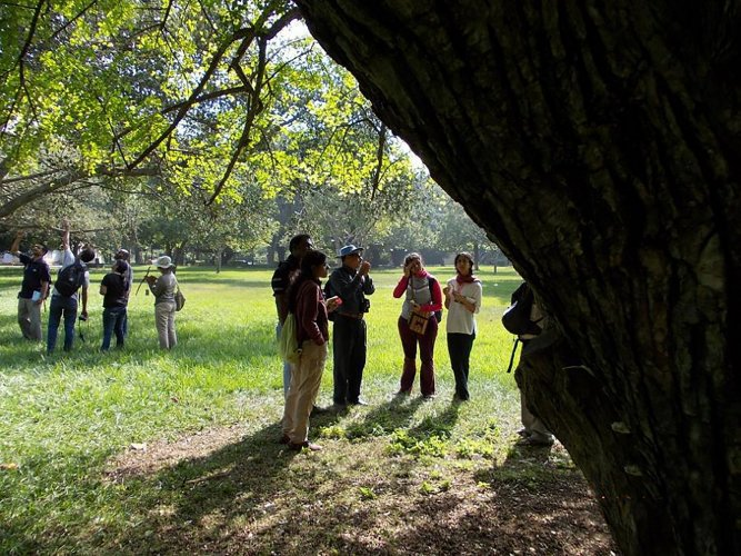 The growing birdwatchers' community meets on the first four Sundays of every month.
