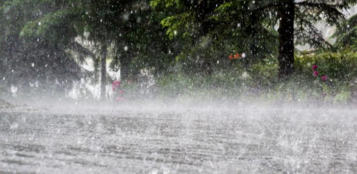 Heavy rain lashes Kerala, 2 districts on alert   Deccan Herald