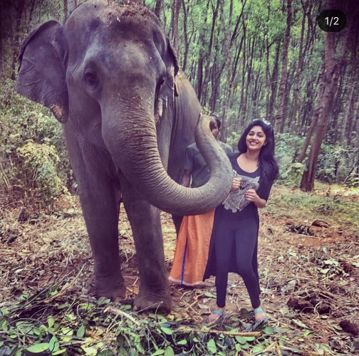 Elephant Maya and actress Samyukta Hornad
