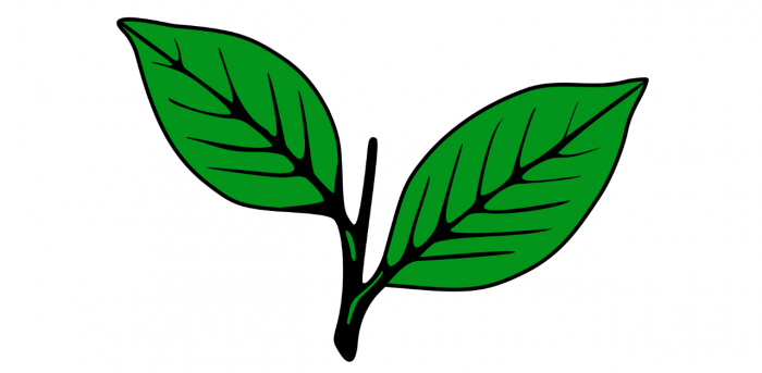 Kerala Congress (M) symbol. Credit: Wikipedia.