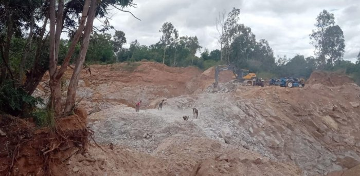 Trees felled for quarrying, at a forest area near Kalenahalli in Srirangapatna taluk, Mandya district.