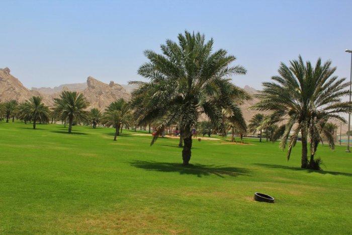 Gardens of Al Ain. PHOTOS BY AUTHOR