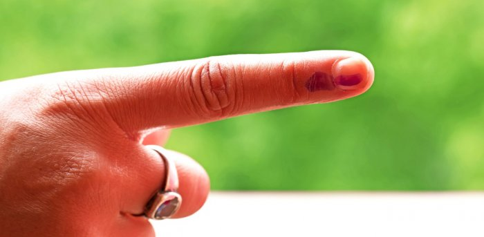 DDC elections and panchayat bypolls will be held in the two blocks in the first phase on November 28. Representative image. Credit: iStock.