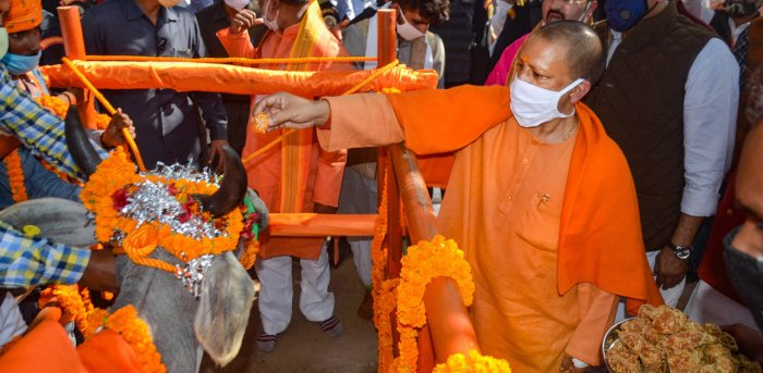 Uttar Pradesh Chief Minister Yogi Adityanath and Union Minister for Jal Shakti, Gajendra Singh Shekhawat (R) worship a cow on the occasion of 'Gopashtami' festival at Tanda fall Cowshed in Mirzapur. Credit: PTI Photo