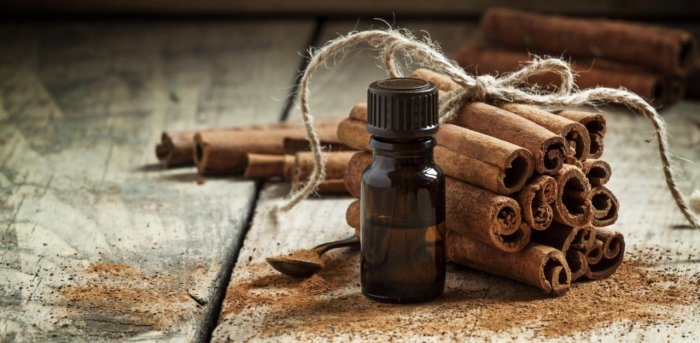 The red-listed medicinal plants include sandalwood, wild clove, wild jamun, wild cinnamon and other species endemic to the Western Ghats. Representative image. Credit: Getty.