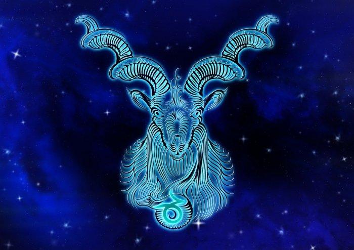 Zodiac Symbol Capricorn Horoscope Sign Patch