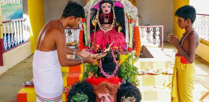 తమిళనాడులో కరోనాదేవి ఆలయం