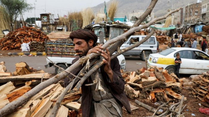 A vendor carries wood at a firewood market in Sanaa, Yemen. Credit: Reuters Photo