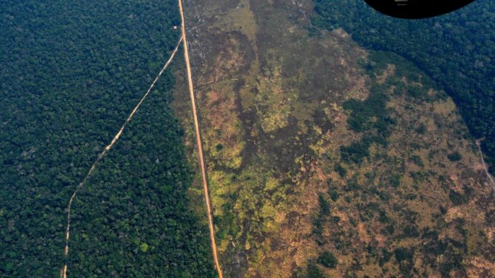 Aerial picture showing a deforested piece of land in the Amazon rainforest. Credit: AFP File Photo