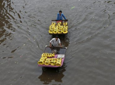 Fruit vendors pass through a flooded street after heavy rains, in Ahmedabad on Sunday, June 24, 2018. PTI