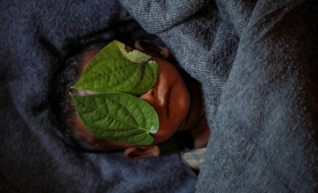 Betel leaves cover the face of 11-month-old Rohingya refugee Abdul Aziz whose wrapped body lay in his family shelter after he died battling high fever and sever cough at the Balukhali refugee camp near Cox\'s Bazar, Bangladesh, December 4, 2017. REUTERS/Damir Sagolj