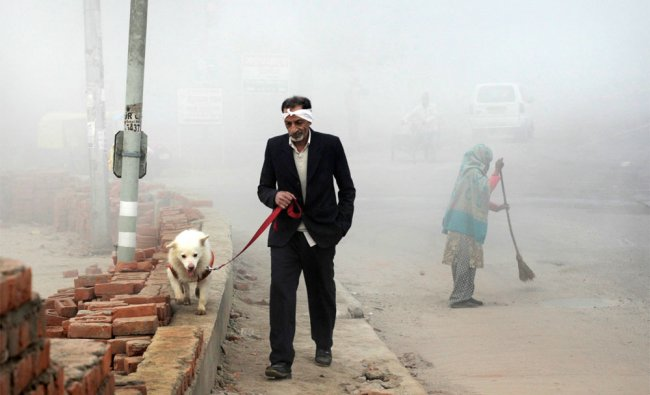 A person takes out his dog for a walk amidst dense morning fog, in New Delhi