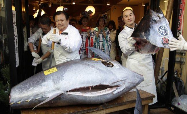 Kiyoshi Kimura cuts a bluefin tuna