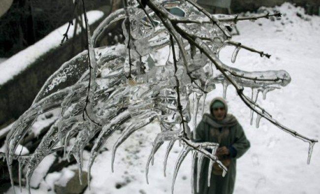 A woman looking at icicles at a tree after a snowfall...