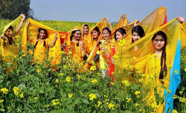 Young girls celebrate Basant Panchami festival in a mustard field in Moradabad